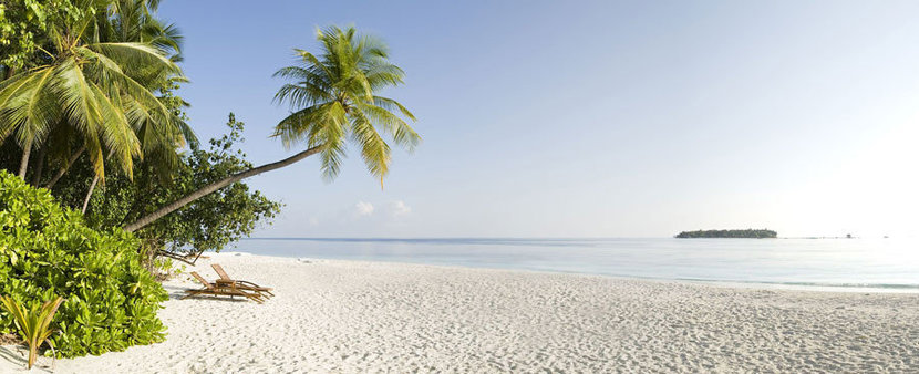 Panoramic Image of beach with White Sand and palm trees