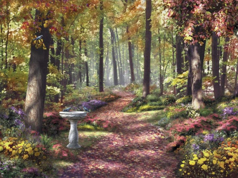 Path In The Forest Wall Mural