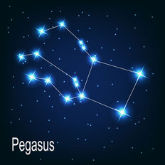 Pegasus Constellation Wall Mural
