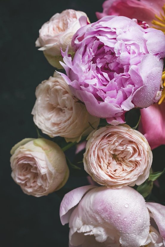 Peonies-And-Roses-Bouquet-Wall-Mural.jpg