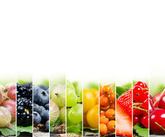 Fruits and Berries Mural Wallpaper