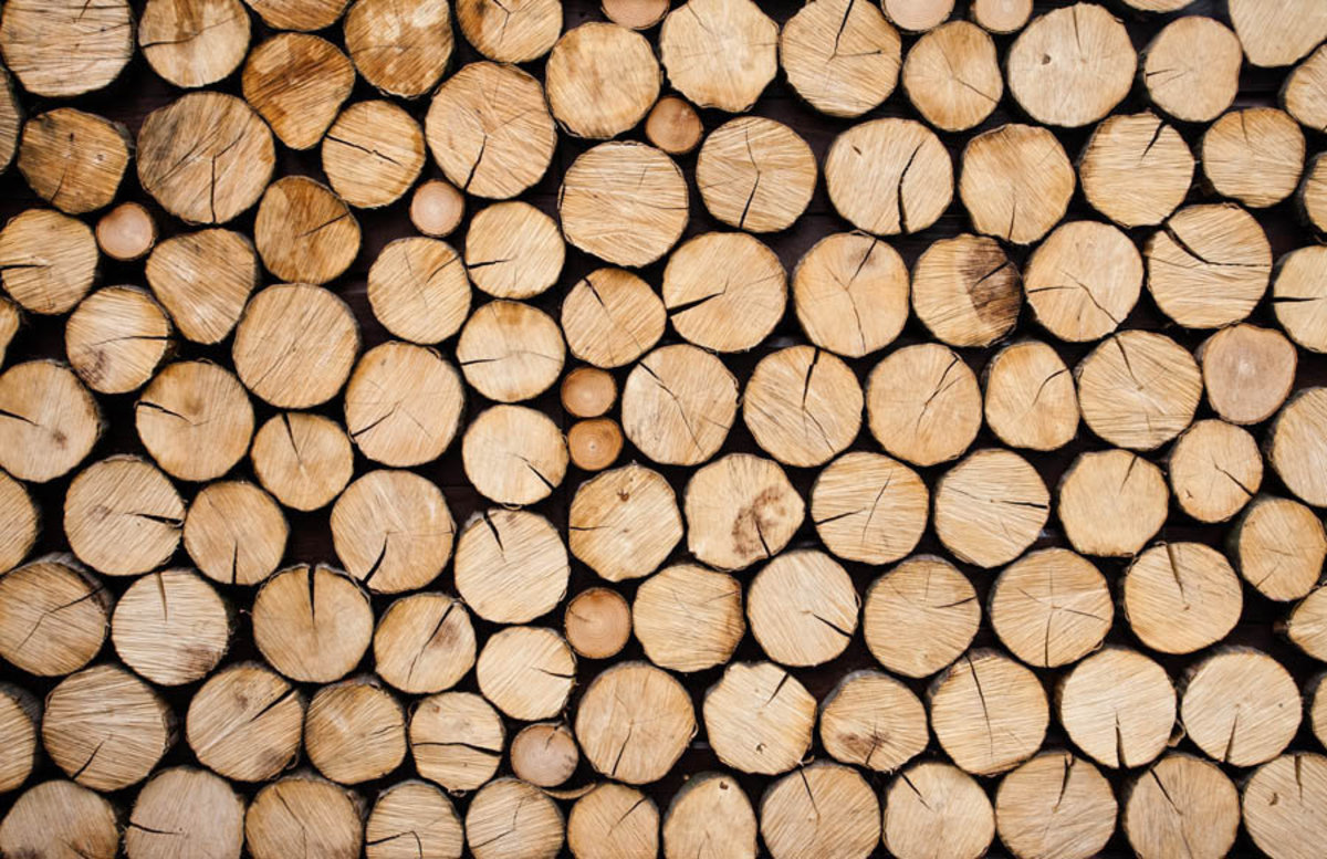 Pile of Wood Logs Ready For Winter Wall Mural