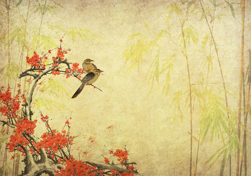 wo birds perched on a plum blossom branch gaze wistfully off into the distance