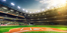 Baseball Grand Arena Mural Wallpaper