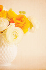 Ranunculus - Creamy And Gold Wallpaper Mural