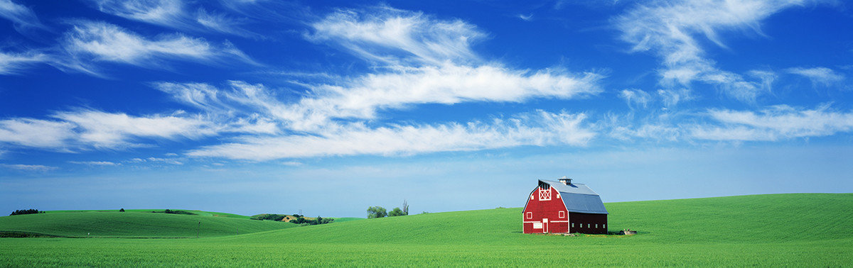 Red Barn In Field Wall Mural