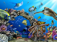 Reef Puzzle Wallpaper Mural