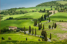 Road With Curves and Cypresses in Tuscany, Italy Wall Mural