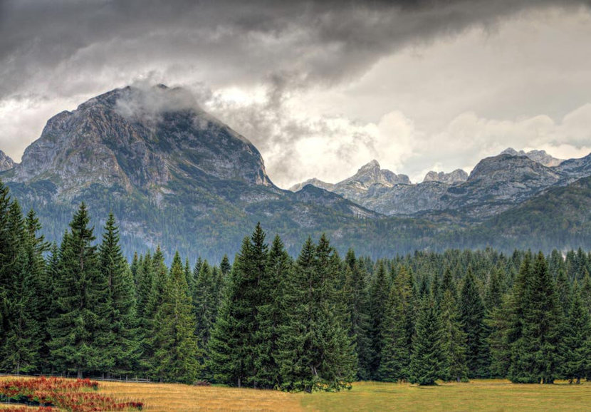 Rocky Peaks mountain with pine tree and cloudy sky