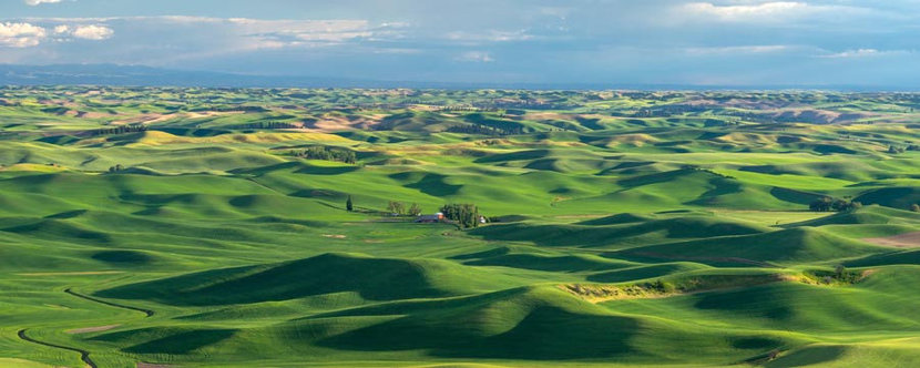 Rolling Hills of the Palouse Mural Wallpaper