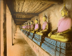 Row of Buddhas Wallpaper Mural