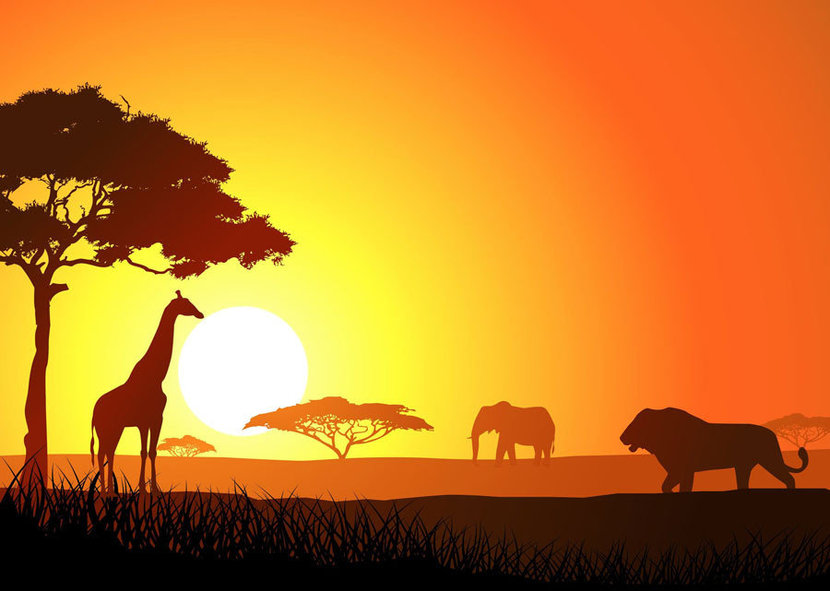 African grassland and the silhouettes of a giraffe, lion, and elephant
