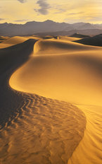 Sand Dunes Death Valley Mural Wallpaper