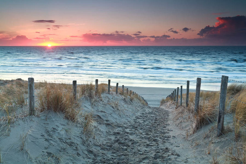 Sand Path To The North Sea Before Sunset In Holland Wall Mural