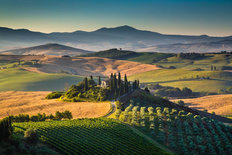 Golden Morning In Tuscany Wallpaper Mural