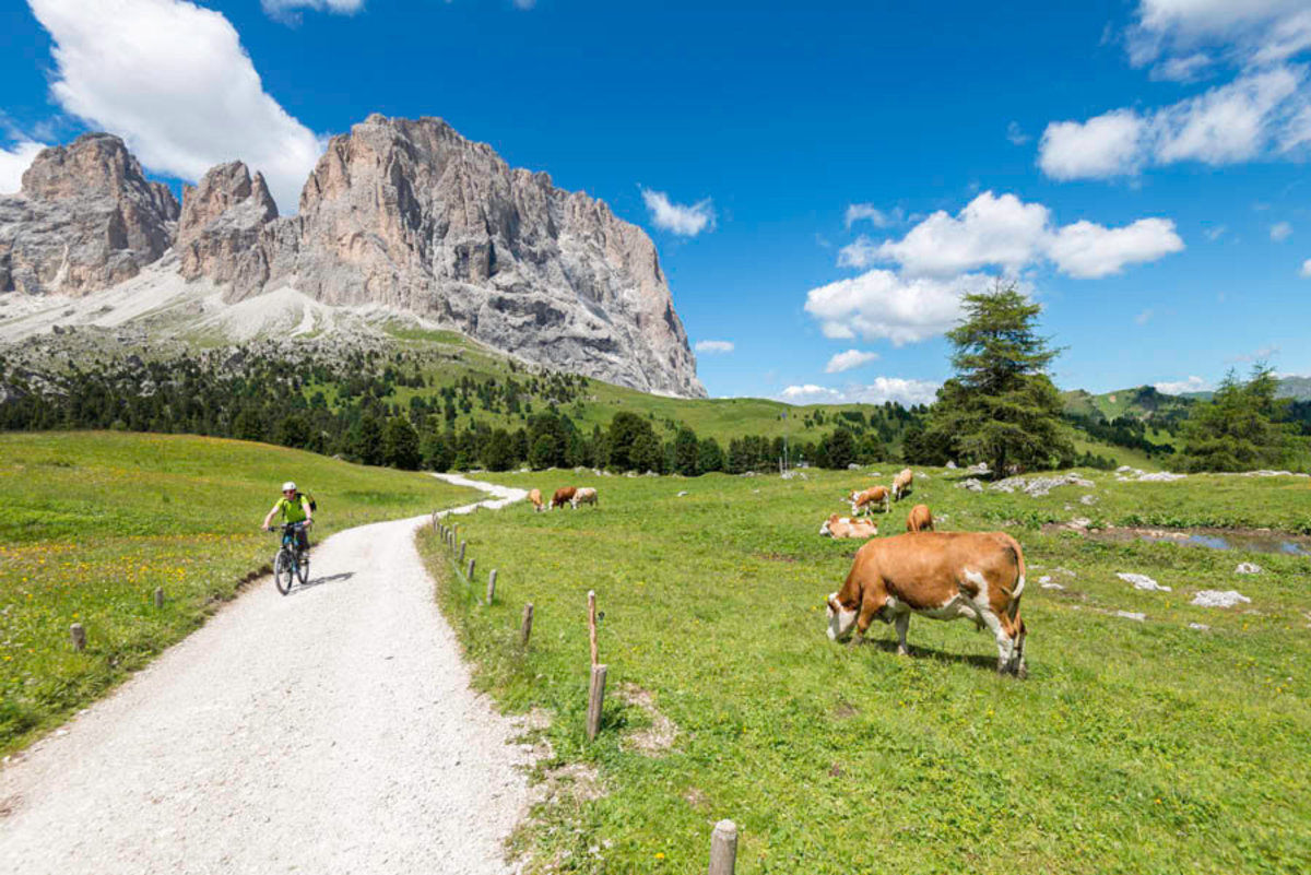 Sella Pass – Path to the Italian Dolomites Wall Mural