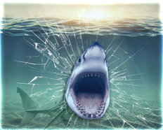 Shark Breaking Glass Wall Mural