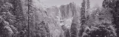 Snow Covered Yosemite Falls Wall Mural