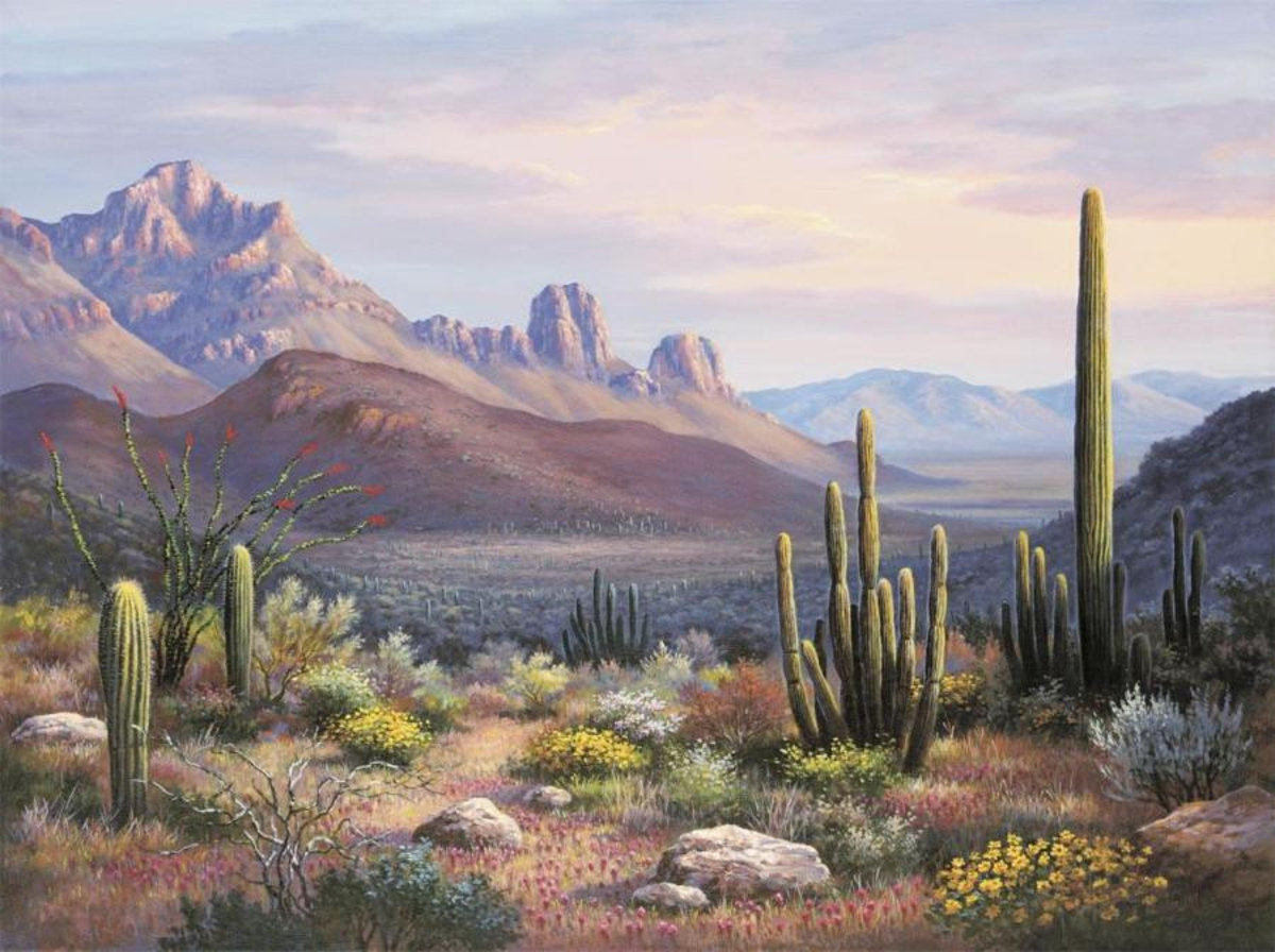 Sonoran Sunset Wallpaper Mural
