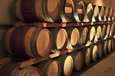 Stacked Wine Barrels Wallpaper Mural