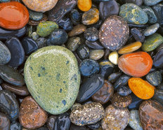 Stones at Lopez Island Mural Wallpaper