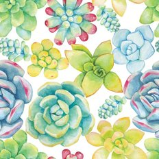 Succulents Painted In Watercolor Pattern Wallpaper