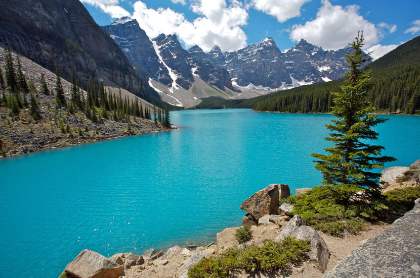 Summer Day at Moraine Lake in Banff National Park  Wall Mural