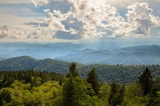 Summer Daze On The Blue Ridge Parkway Wall Mural