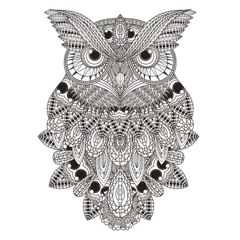 Black and White Owl Coloring Illustration