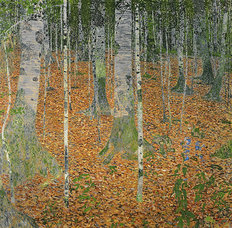 The Birch Wood Mural Wallpaper