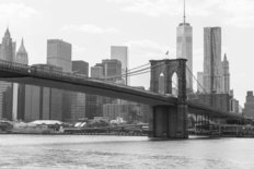 The Brooklyn Bridge In Black And White Wall Mural