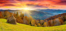 The Mountain Autumn Landscape With Colorful Forest Wall Mural