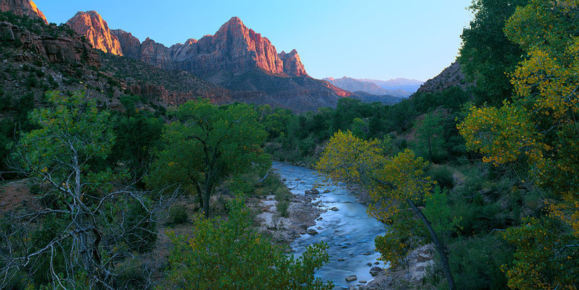 The Watchman And Virgin River, Zion National Park, UT Wall Mural