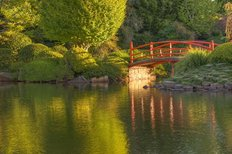 Tranquil Bridge In A Japanese Garden Wall Mural