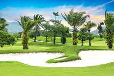 Tropical Tree Golf Course Mural Wallpaper