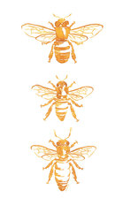 Trio of Bees - White Wallpaper Mural