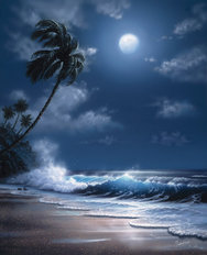 Tropical Moonlight Wall Mural