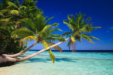 Tropical Paradise at The Maldives  Mural Wallpaper