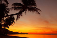 Tropical Sunset Beach Wallpaper Mural