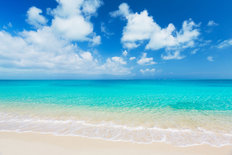 Tropical White Sand Beach Mural Wallpaper