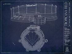 Tropicana Field Blueprint Wall Mural