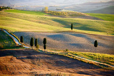 Tuscan Countryside Italian Landscape Wallpaper Mural