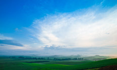 Tuscany Valley Meadow Wall Mural