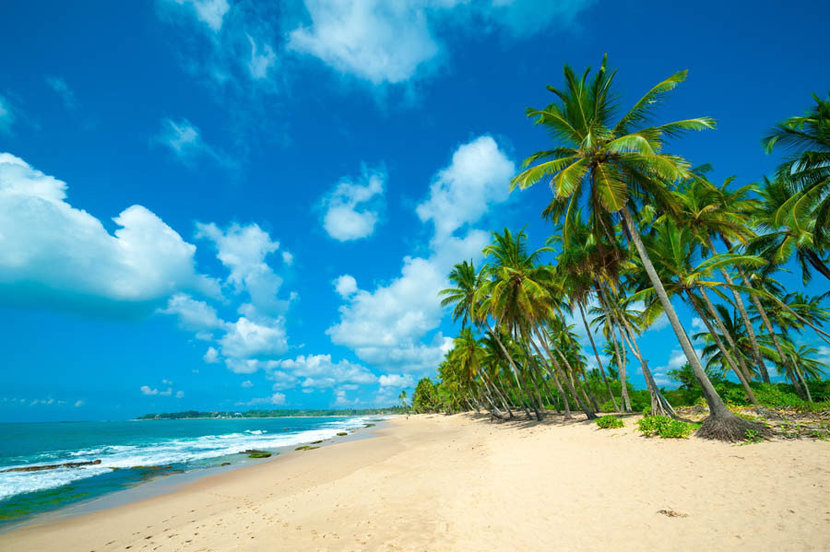 Tropical Beach in Sri Lanka Mural Wallpaper