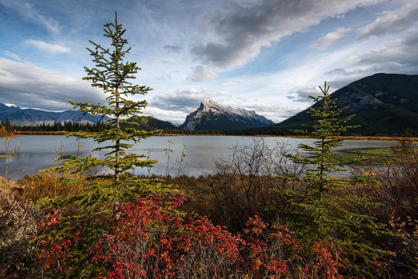 Vermilion Lakes and Mount Rundle Wallpaper Mural