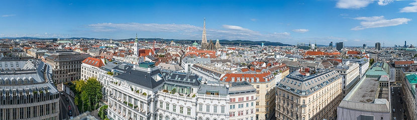 Vienna Panoramic Mural Wallpaper