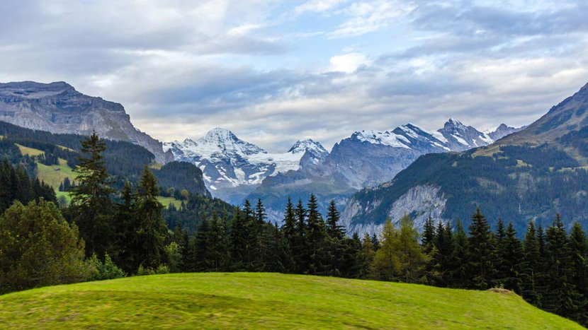 View of Swiss Alps From Wengen Wall Mural