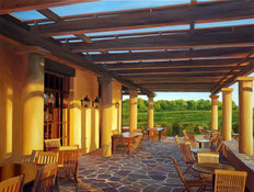 Vineyard Patio Mural Wallpaper