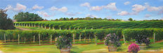 Vineyard View Wall Mural