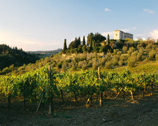 Vineyards In Tuscany Villa Mural Wallpaper